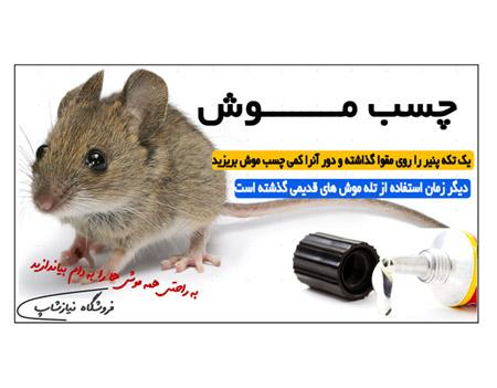 چسب موش گیر بهترین روش گرفتن موش